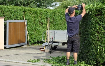 professional Amersham Common hedge cutting services