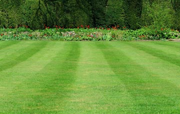 professional Amersham Common grass cutting services