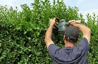 free Amersham Common hedge trimming quotes