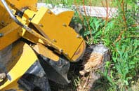 Amersham Common tree stump grinding services